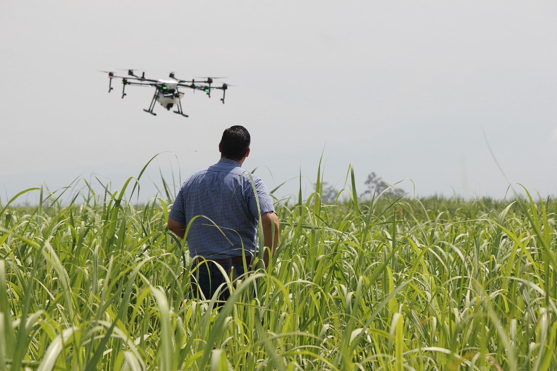 dron_Aaltoconsultores_agricultura